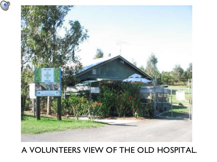 A VOLUNTEERS VIEW OF THE OLD HOSPITAL.