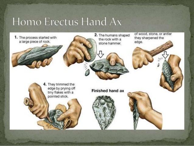 Paleolithic Lessons