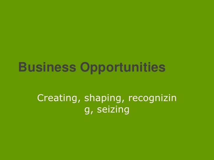 Business Opportunities<br />Creating, shaping, recognizing, seizing<br />
