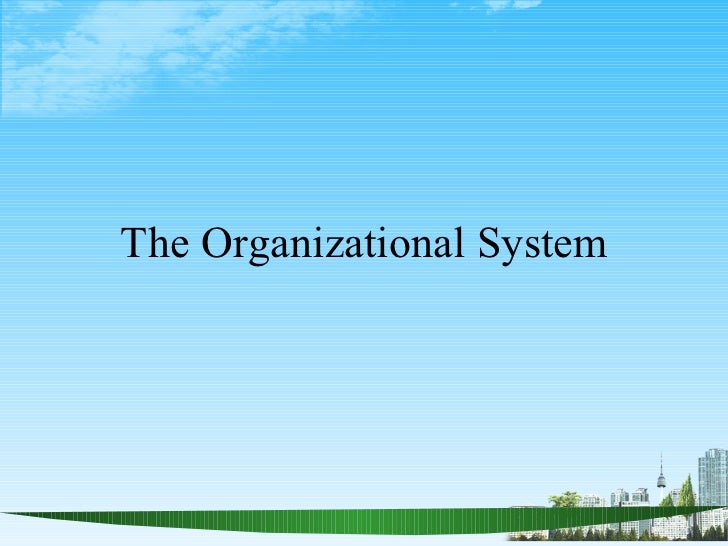The Organizational System