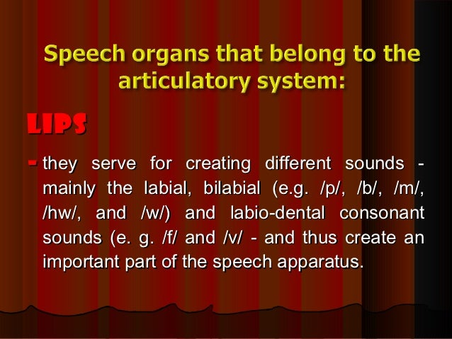 The organs of speech and their function 3 ccuart Image collections