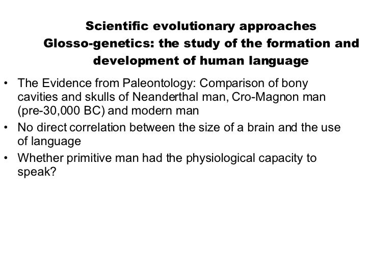 Scientific evolutionary approaches Glosso-genetics: the study of the formation and development of human language <ul><li>T...