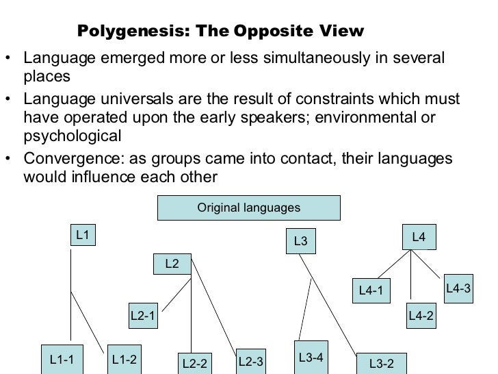 Polygenesis: The Opposite View <ul><li>Language emerged more or less simultaneously in several places </li></ul><ul><li>La...