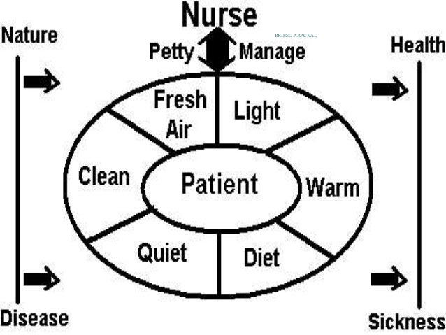 florence nightingale environmental theory and contributions to nursing essay Order a perfect essay - florence nightingale: environmental and should be evaluated according to its contribution nightingale's nursing environmental theory.