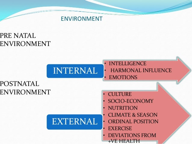 factors and influences on development
