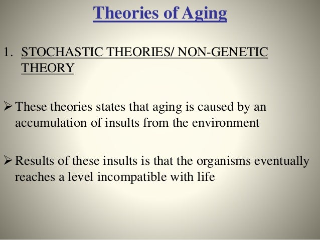 two major theories of ageing