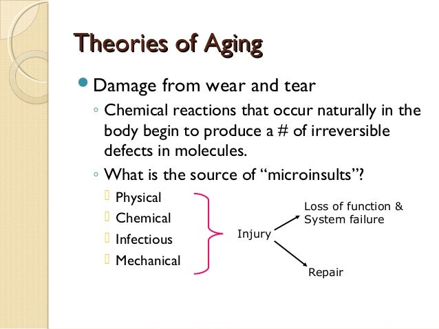 activity theory of aging Activity theory a concept proposed by robert j havighurst [1900-1990] that continuing activities from middle age promotes well-being and satisfaction in aging thus older adults who are actively involved in a variety of situations and who establish new roles and relationships are more likely to age with a sense of satisfaction activity theory a social.