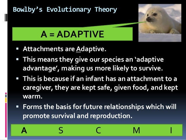 the evolutionary theory of attachment Psychologists have put forward different explanations of attachment, such as learning theory and bowlby's theory outline and evaluate one or more explanations of attachment (total 12 marks) q2 tick two of the boxes below to indicate which of the following statements relate to bowlby's evolutionary theory of attachment.