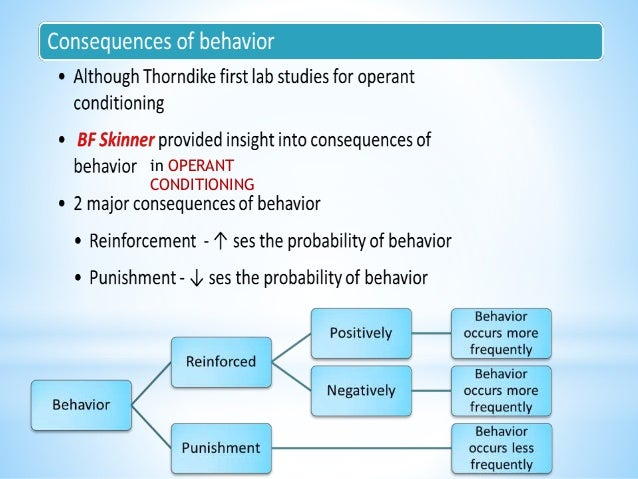 theories of child psychology pdf