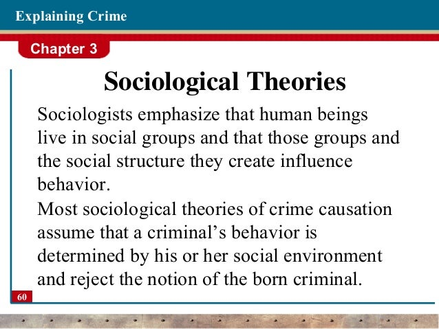 assess the sociological perspectives on crime 4) interactionist perspective the idea that society has a consensus about what crime is and the idea that crime is perspectives a2.