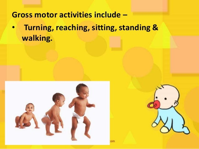 Fine motor development is - the involvement of reflexes. The child learns to use hands & fingers for thumb apposition, pal...