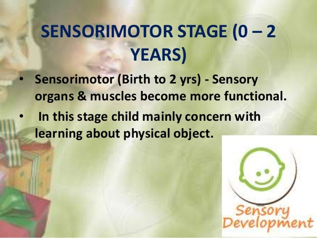 • Stage 1: Use of reflexes (Birth to 1month) Movements are primarily reflexive • Stage 2: Primary circular reaction (1-4 m...