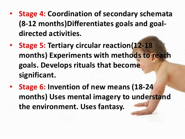 b. Pre-operational (2-7 years) - • Emerging ability to think Pre-conceptual stage (2-4 year) - • Thinking tends to be egoc...