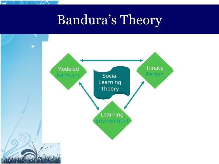 4 explain the theories of learning which acquire patterns of behaviour