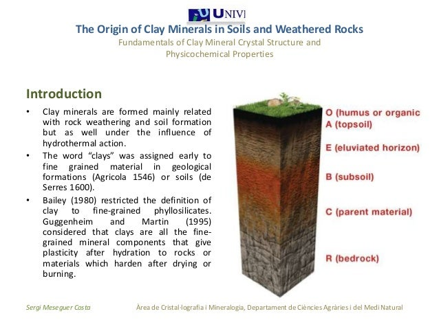 The origin of clay minerals 1 1 for Mineral soil definition