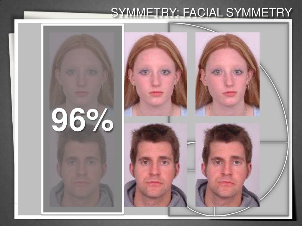 Measuring facial symmetry — photo 11