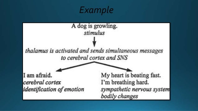 Theory of emotion