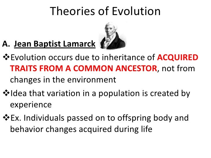 the theory of evolution and changes