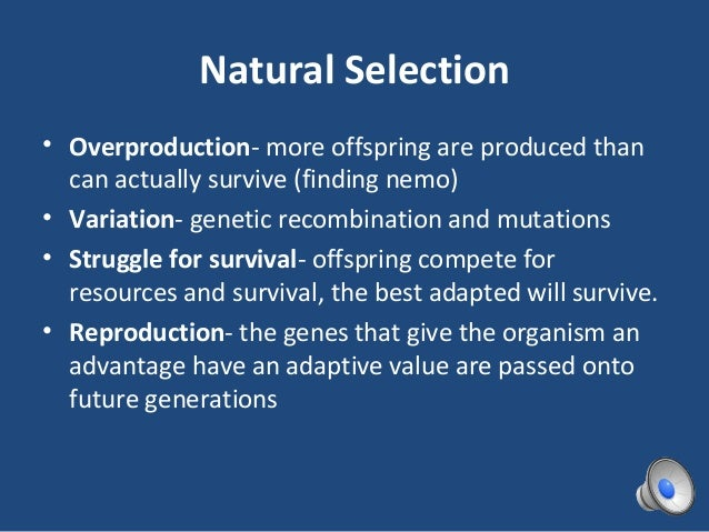 Natural Selection Can Best Be Defined As The