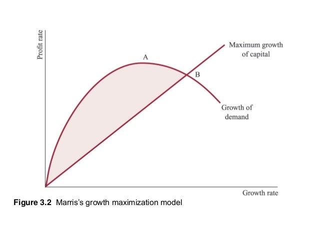 Examples of Profit Maximization