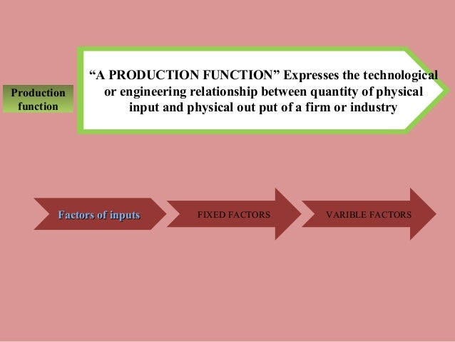 production function expresses