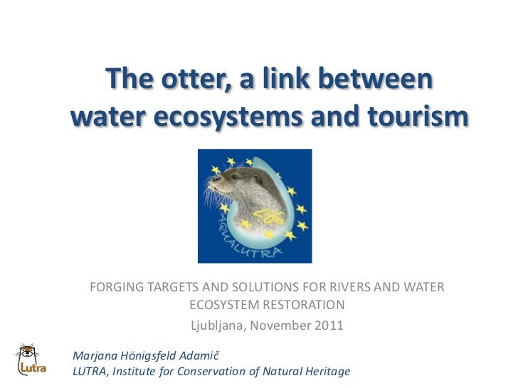 The otter, a link betweenwater ecosystems and tourism   FORGING TARGETS AND SOLUTIONS FOR RIVERS AND WATER                ...