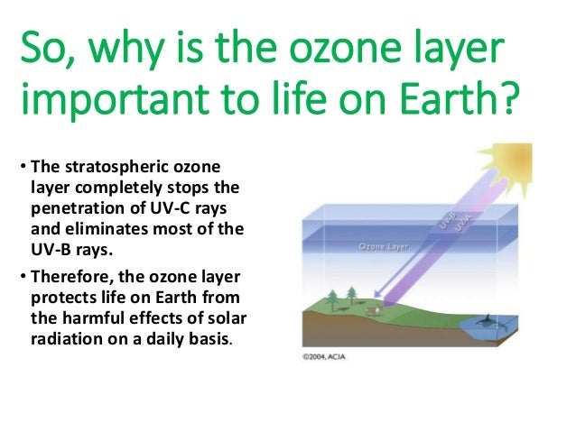 the importance of the ozone Damage to ozone layer earlier in the year, ozone depletion over northern latitudes also reached record levels, leading to.