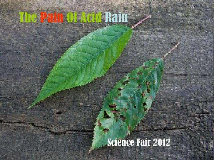 The Pain Of Acid Rain                 Science Fair 2012