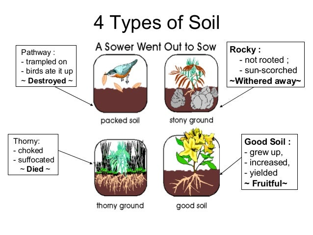 The parable of the sower for Four types of soil