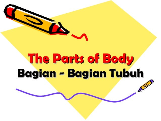 The Parts of BodyThe Parts of Body Bagian - Bagian TubuhBagian - Bagian Tubuh