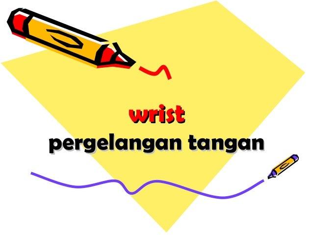 wristwrist pergelangan tanganpergelangan tangan