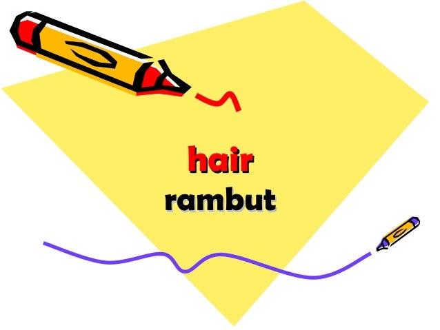 hairhair rambutrambut