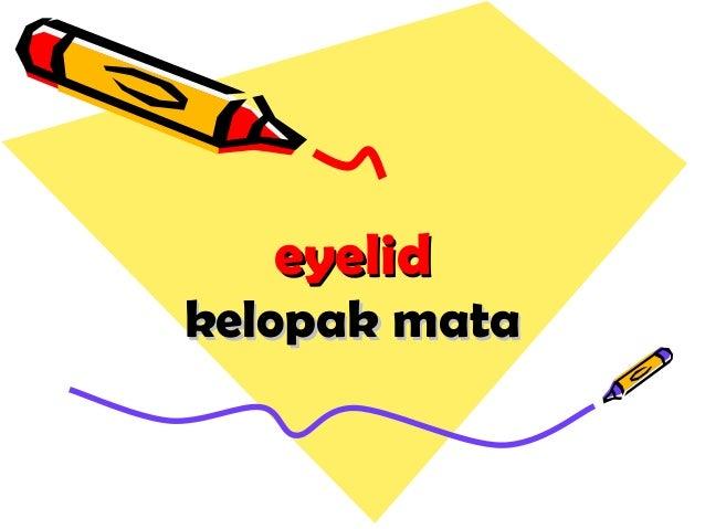 eyelideyelid kelopak matakelopak mata