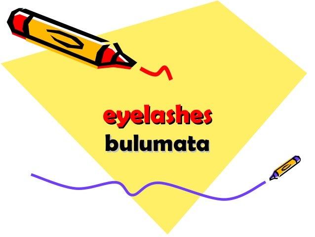 eyelasheseyelashes bulumatabulumata