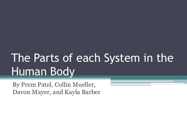 The Parts of each System in the Human Body<br />By Prem Patel, Collin Mueller, Davon Mayer, and Kayla Barber<br />