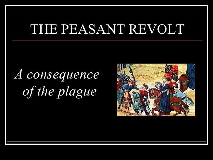 THE PEASANT REVOLT <ul><li>A consequence of the plague </li></ul>