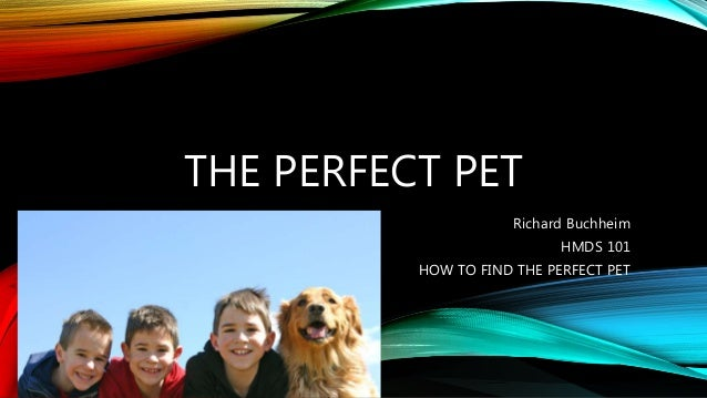 THE PERFECT PET  Richard Buchheim  HMDS 101  HOW TO FIND THE PERFECT PET