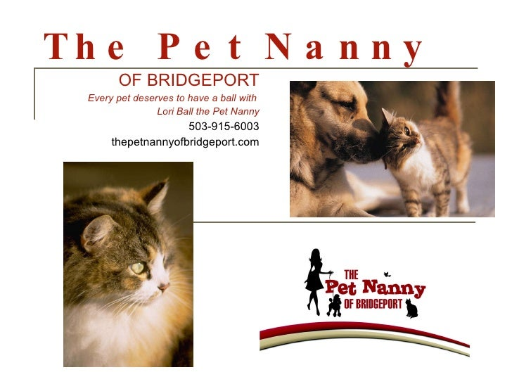 The Pet Nanny OF BRIDGEPORT Every pet deserves to have a ball with  Lori Ball the Pet Nanny 503-915-6003 thepetnannyofbrid...