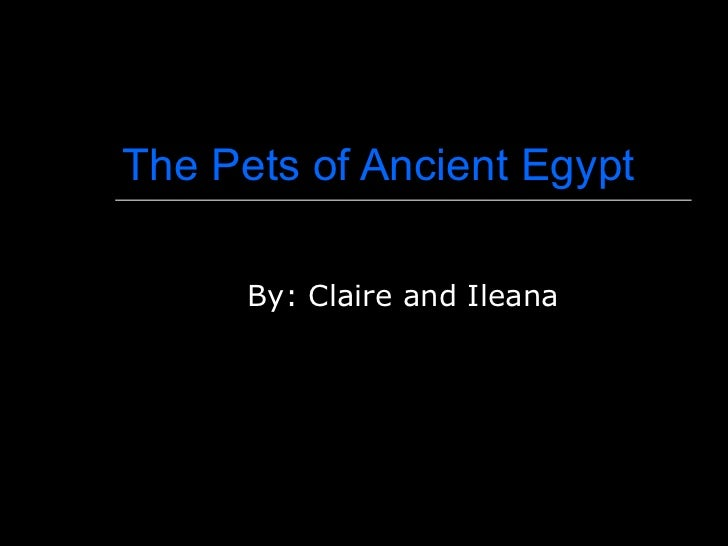 The Pets of Ancient Egypt By: Claire and Ileana