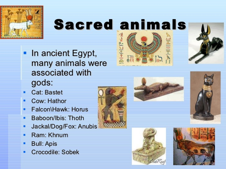 The pets of ancient egypt