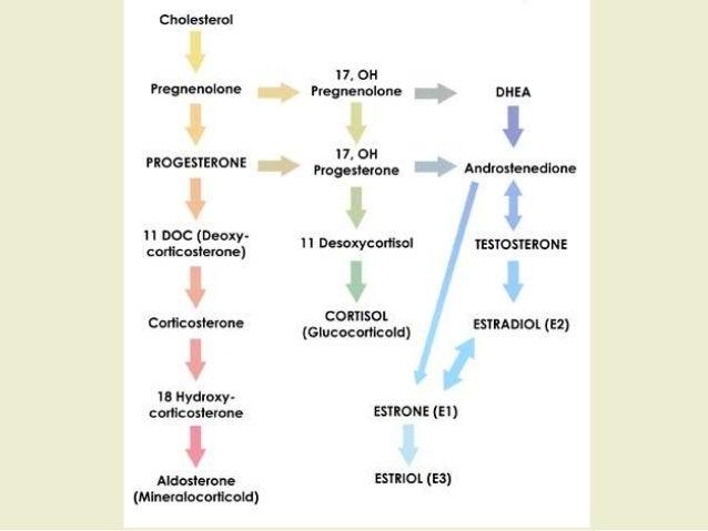 drug induced nutrient depletion pdf