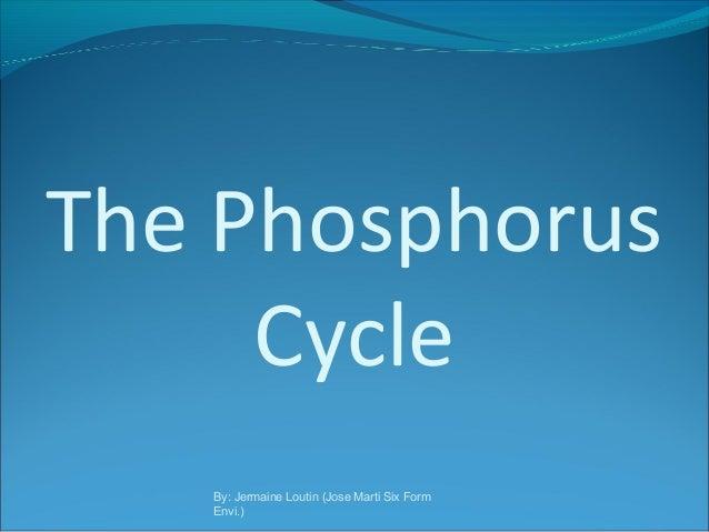 The Phosphorus Cycle By: Jermaine Loutin (Jose Marti Six Form Envi.)