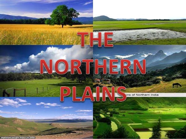 The northern plains have been formed by the interplay of three major river systems, namely- the Indus, the Ganga and the B...