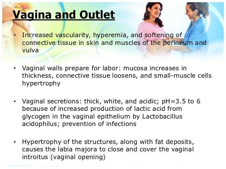 Acidophilus and pregnancy