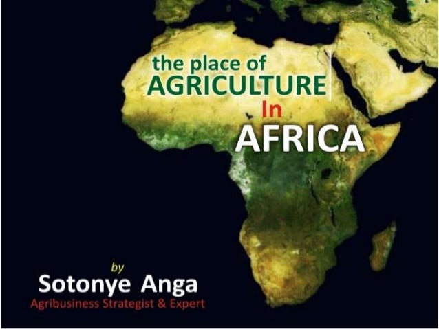 The place of agriculture in africa by sotonye anga