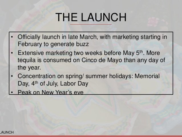 product launch marketing plan pdf