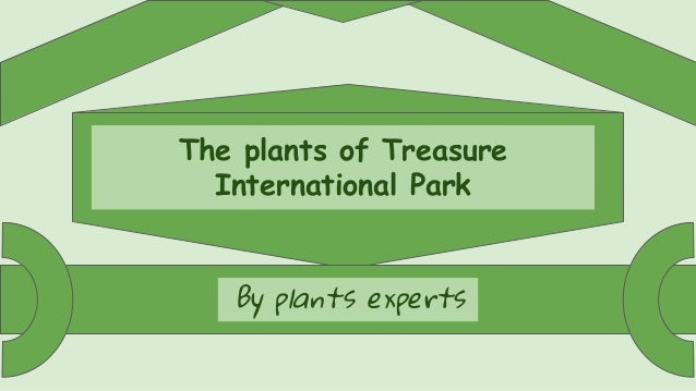 The plants of Treasure International Park By plants experts