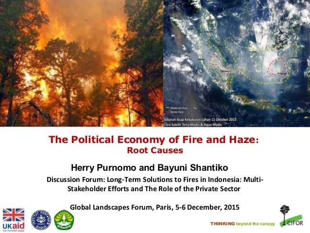 THINKING beyond the canopy The Political Economy of Fire and Haze: Root Causes Herry Purnomo and Bayuni Shantiko Discussio...