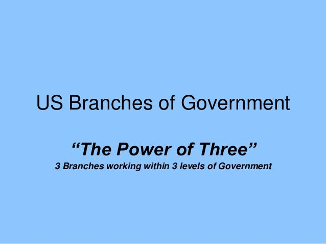 """US Branches of Government """"The Power of Three"""" 3 Branches working within 3 levels of Government"""