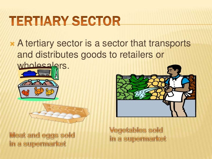 purchasing tertiary sector of the economy The service sector/tertiary sector consists of the soft parts of the economy, ie activities where people offer their knowledge and time to improve productivity.